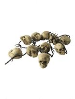 Rusty Barb Wire avec 10 crânes Accessoires génériques