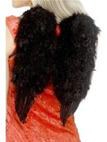 Ailes d'ange plume noire Ailes & Halos