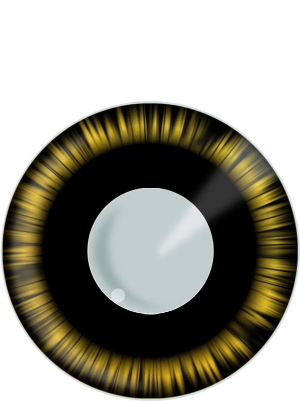 Lentilles de contact Manga vert et noir lentilles de Contact