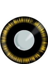 Manga vert et noir lentilles de Contact Lentilles de contact