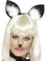 Chapeaux Animaux Oreilles de chat