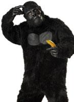 Costume de gorille Animaux Costume Adulte