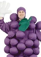Costume de raisin pourpre Alimentation & boisson