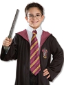 Deguisement Harry Potter Harry Potter cravate