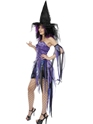 Halloween Costume Femme Costume sorcière coquine