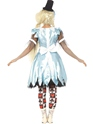 Halloween Costume Femme Alice in Blunderland Costume