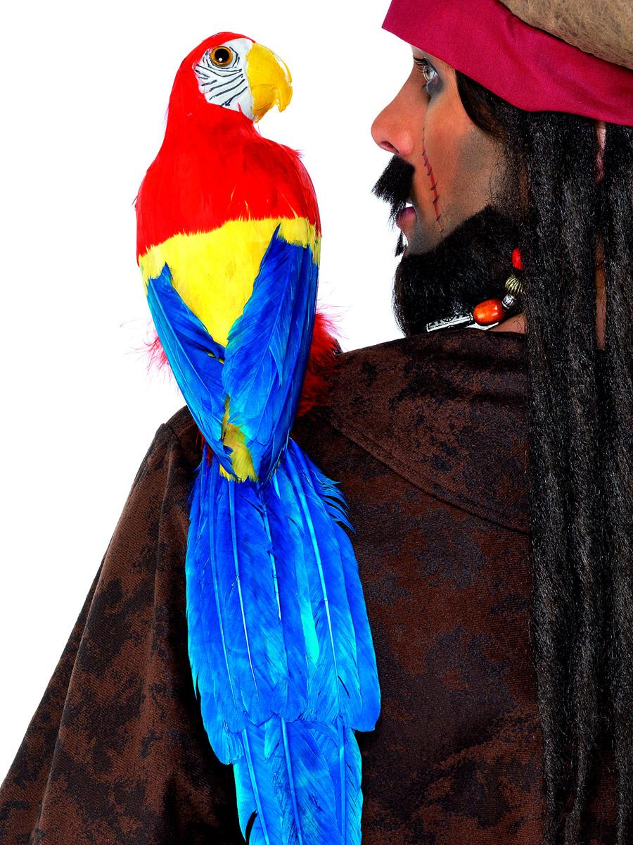 Accessoire de Pirate 20 pouces Parrot