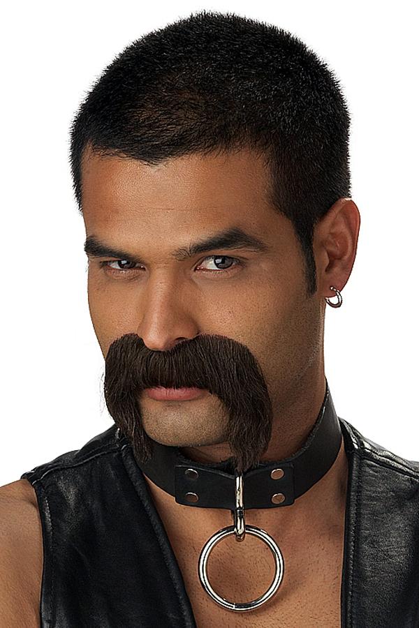 http://www.desdeguisements.com/deguisements/perruque-carnaval/barbes-moustache/big-deguisement-4723_7325.jpg