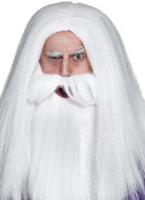 Magiciens perruque et barbe mis en blanc Perruques Homme